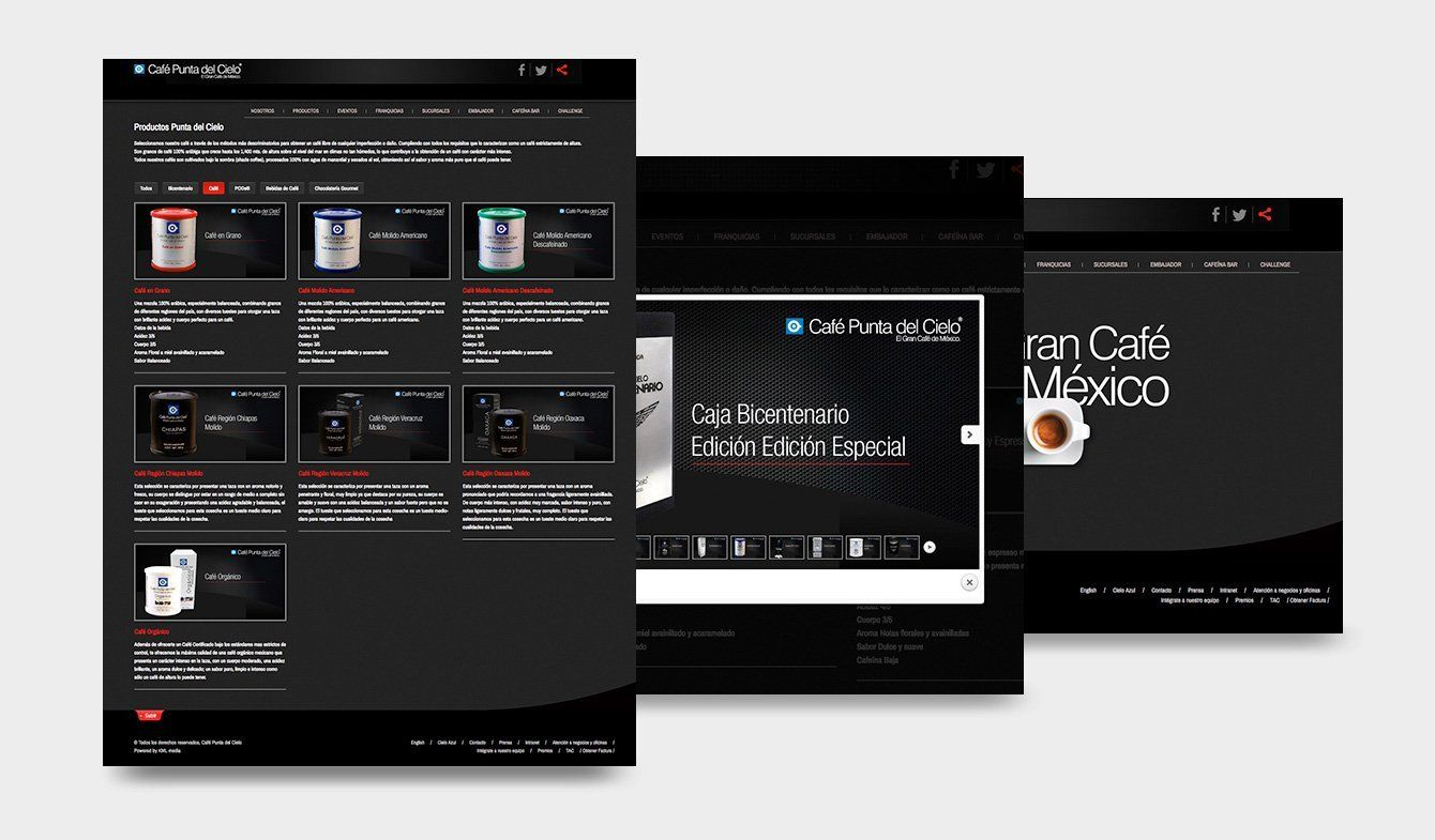 Propuesta de sitio Web Café Punta del Cielo para renovar imagen y tecnología en 2013, no se publicó