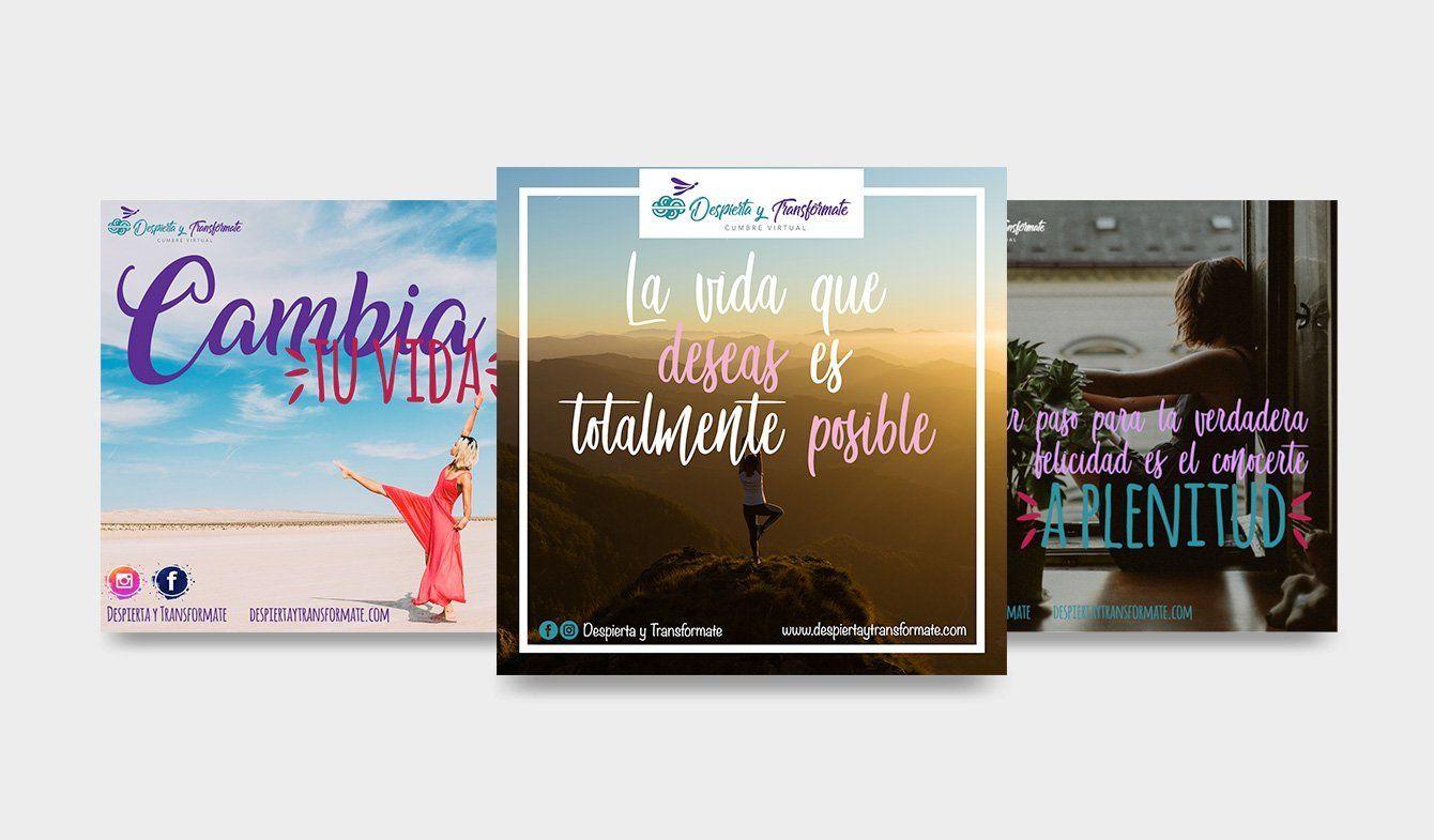 carpeta-ninja-marketing-proyecto-social-media-desipertaytransformate